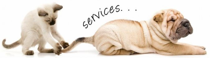 dogandcatServices.jpeg